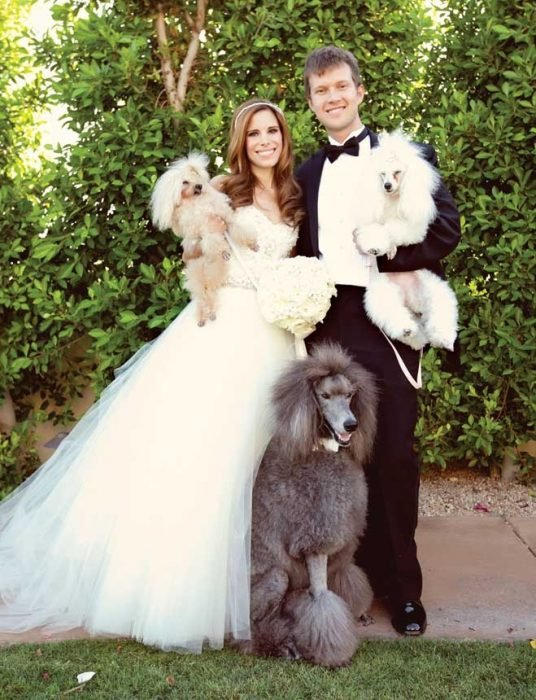 bridal couple with their dogs