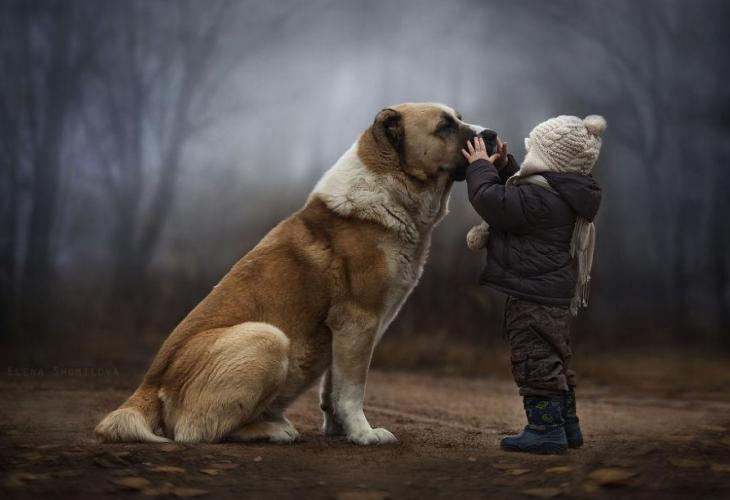 Un niño parado frente a su perro tocando su hocico