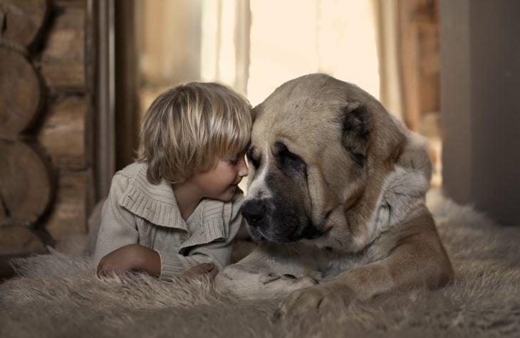Un niño y un perro juntando sus cabezas