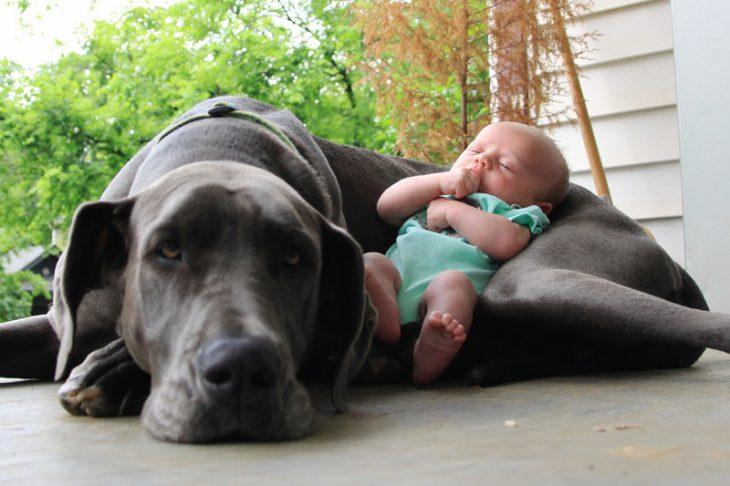 Un bebé recostado sobre su perro