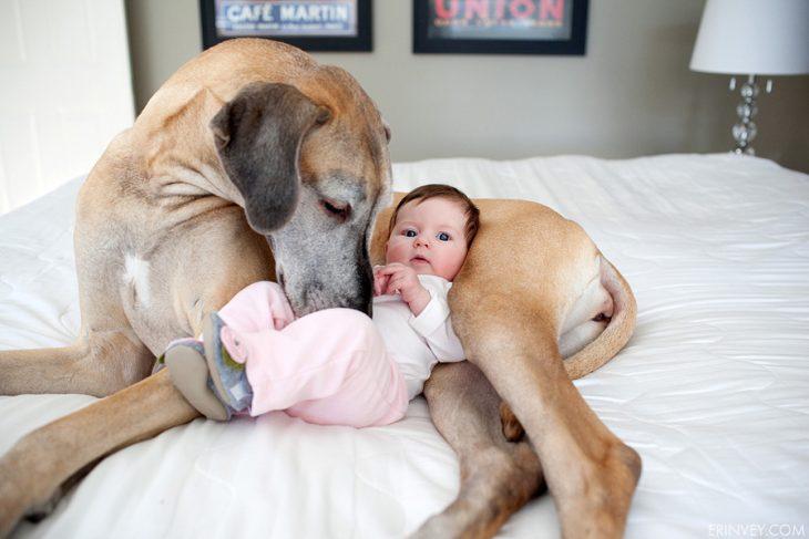 Una bebe recostada sobre su perro en una cama
