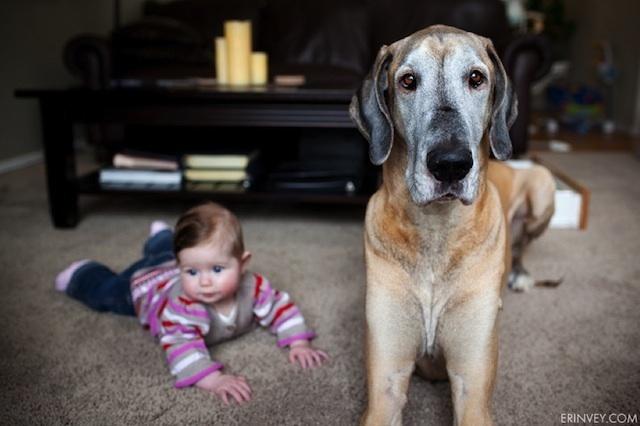 Niña recostada a un costado de su perro