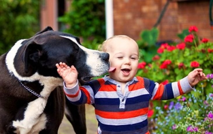 Un niño caminando con su perro mientras le lame un cachete