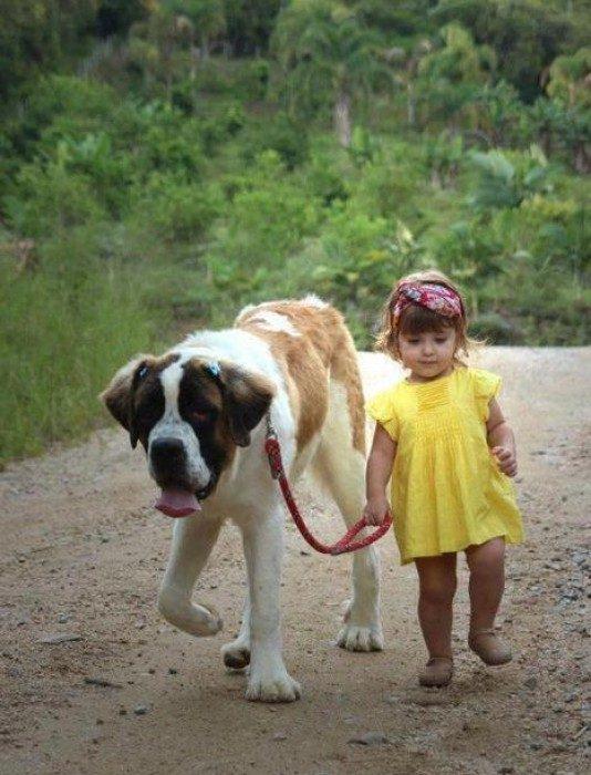 Una niña paseando a su perro