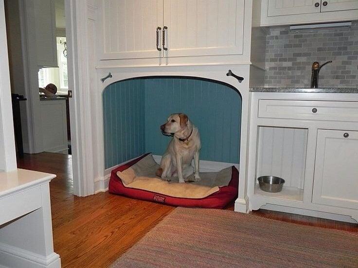 15 Casas Muy Creativas Que Har 225 N Que Tu Perro Sea Feliz