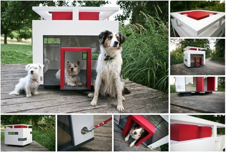 Diseño moderno de casita para perro