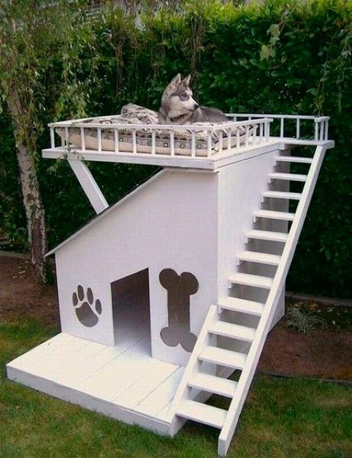 15 casas muy creativas que har n que tu perro sea feliz - Casa de mascotas ...