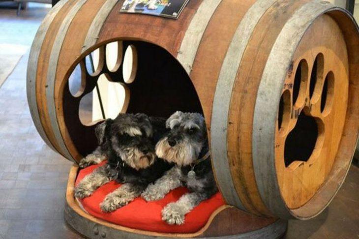 Casita de perro dentro de un barril