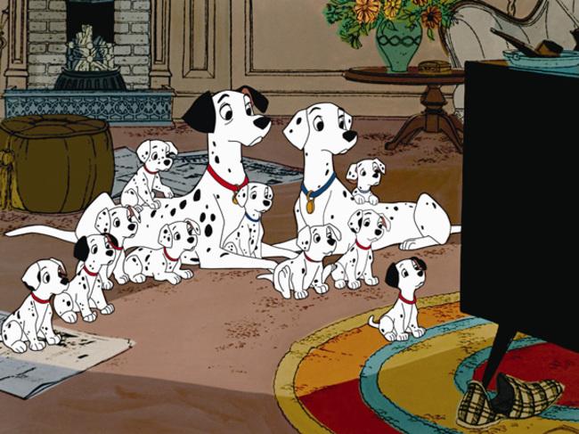 familia de perros daltata mirando la televisión en la sala de estar
