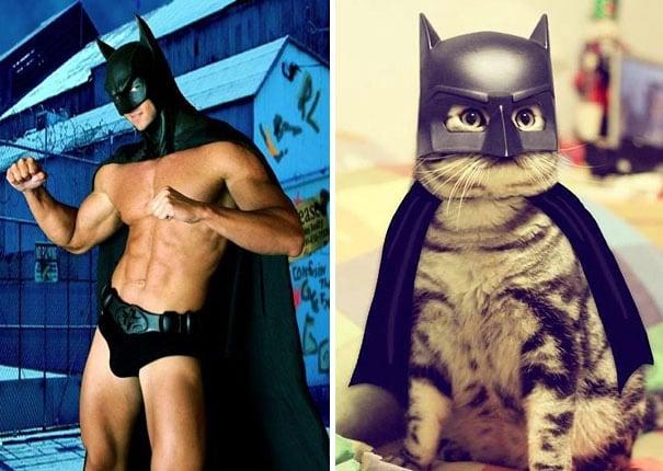 hombre y gato vestidos como el personaje de batman