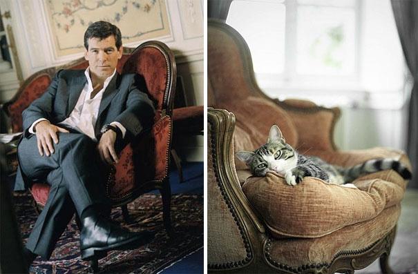 hombre sentado en un sillón con la pierna cruzada y un gato acostado en un sofá