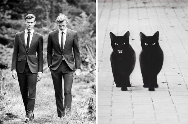 hombres vestidos de traje caminando por un campo y gatos negros caminando por la calle