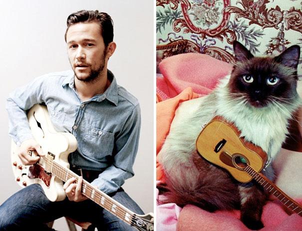 hombre tocando la guitarra sentado en un banco y gato con una pequeña guitarra en sus patas