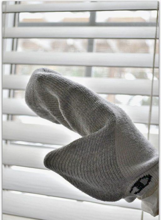 persians con un calcetin