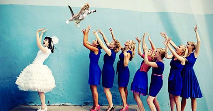 En lugar del ramo, ¡tiran al gato! ¿Te animas para tu foto de bodas?
