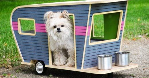 15 Casas para perro que harán a tu mascota la mas feliz del mundo