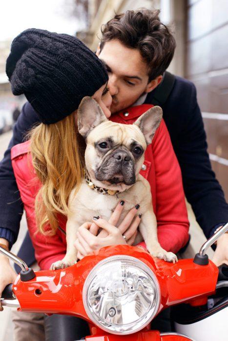 Enamorados en una moto con un perro bulldog francés