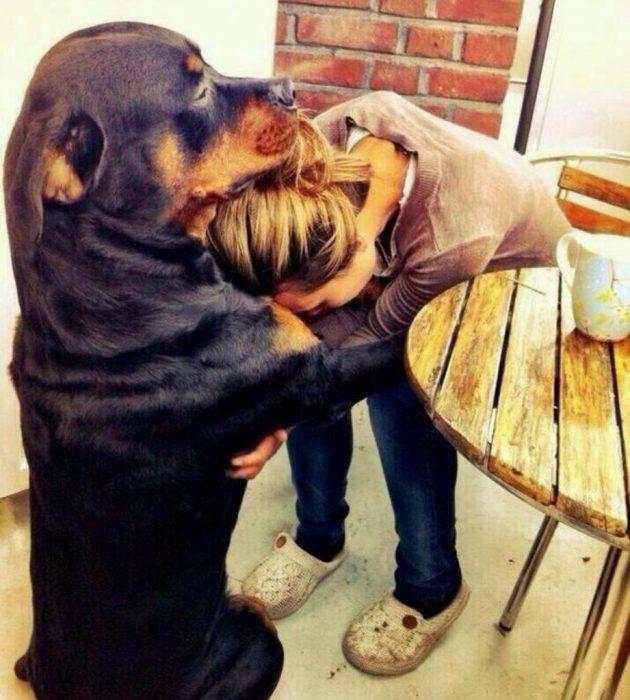 Perro negro abrazando a su dueña