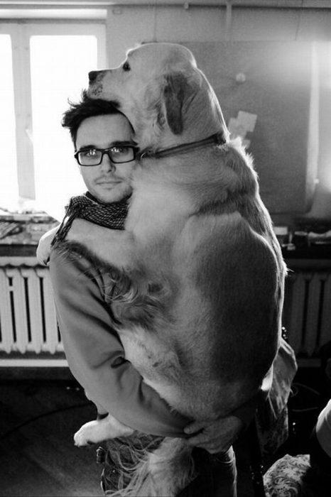 perro sostenido en brazos por su dueño