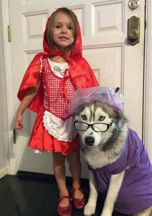 Perros disfrazados (1)