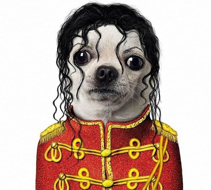 Perros disfrazados (10)