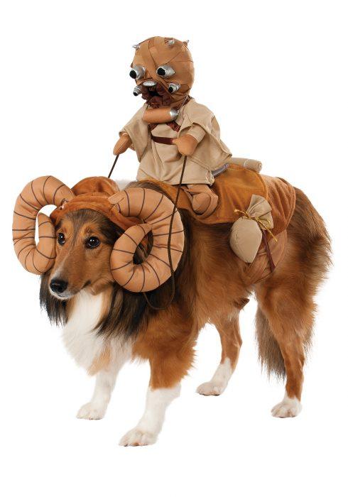 Perros disfrazados (32)