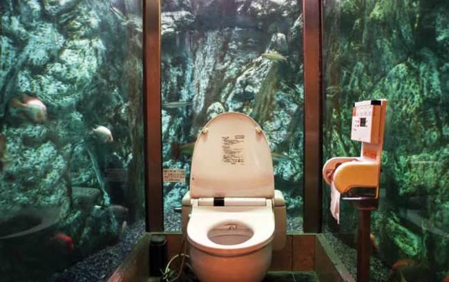 baño rodeado de paredes de cristal donde se ven peces
