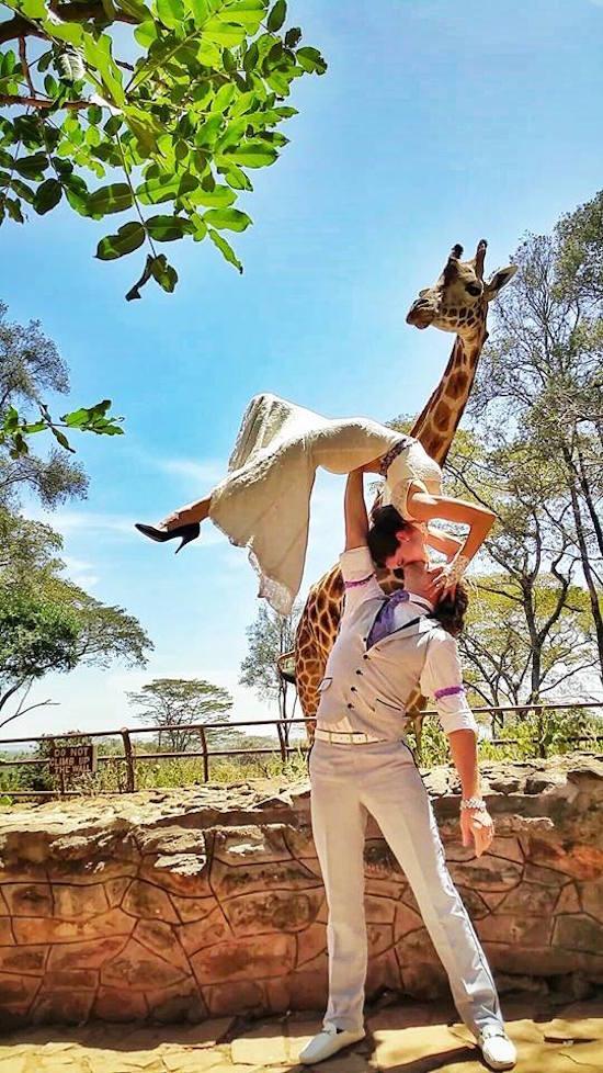 novio cargando a la novia haciendo acrobacias mientras están en un zoológico vestidos de novios