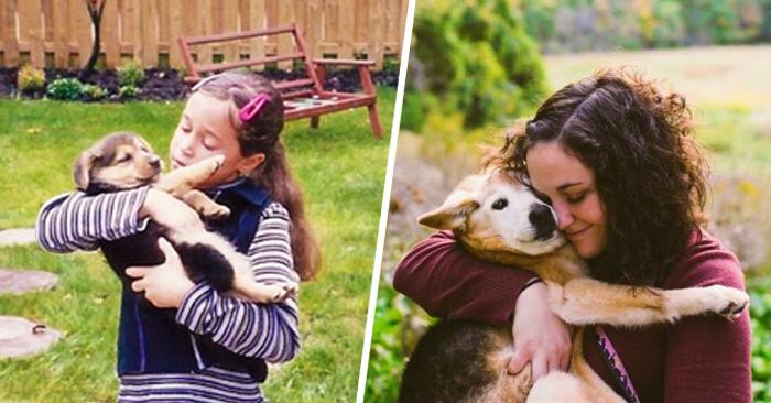 Una mujer se DESPIDE de su perra de 16 años con una EMOTIVA sesión fotográfica