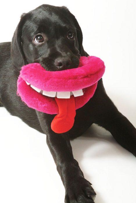 perro con una almohada en forma de labios color rosa
