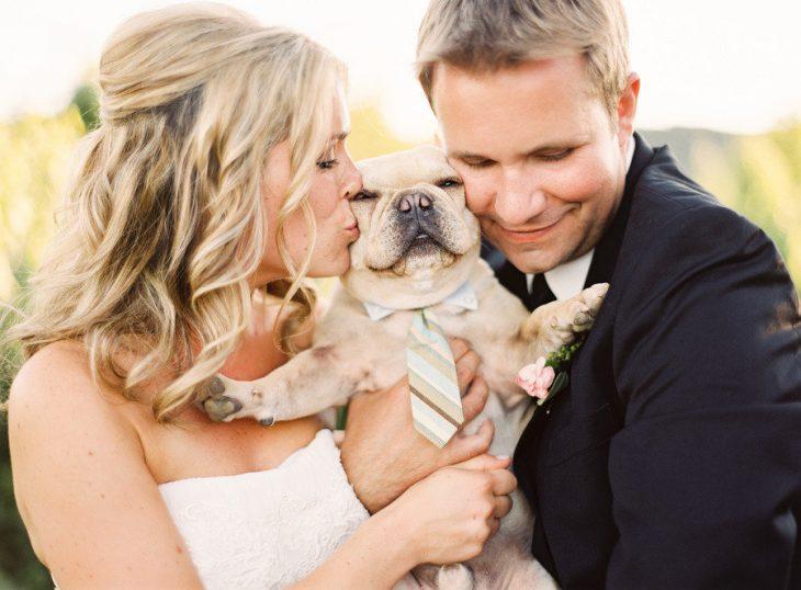 Perro con corbata en la boda de sus amos