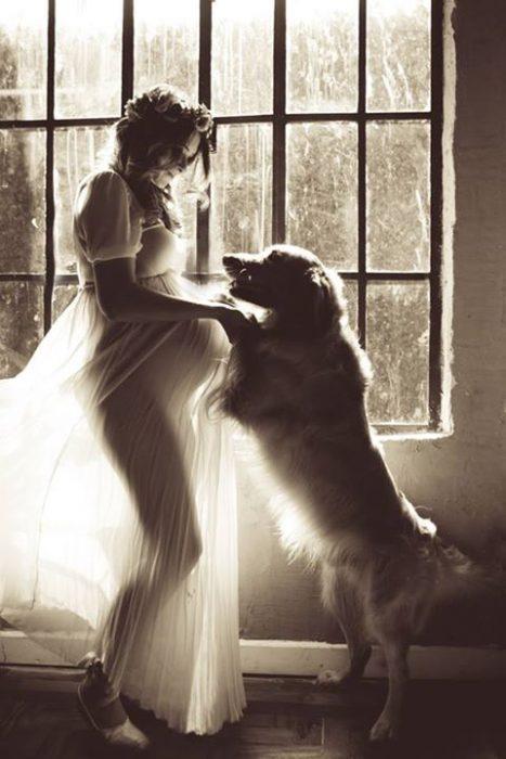 perros y embarazadas (20)