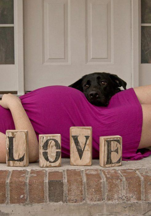 perros y embarazadas (25)