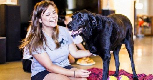 El ÚLTIMO día de vida de Dukey el perro... Su despedida fue simplemente hermosa y emotiva