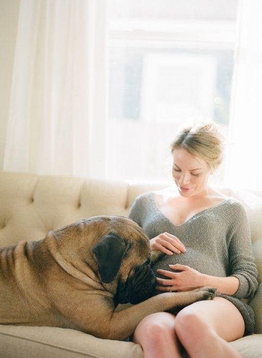 perro sentado junto a su dueña que esta embarazada en un sofá