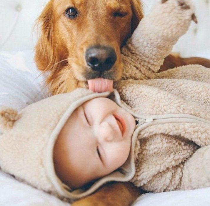 perro lamiendo el cachete de un bebé que esta recostado en la cama