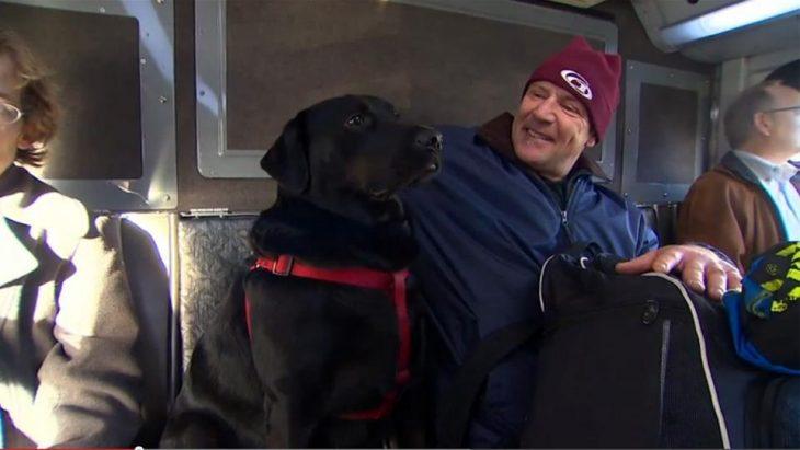 perro que esta sentado en el asiento de un autobús mientras un hombre le acaricia la cabeza