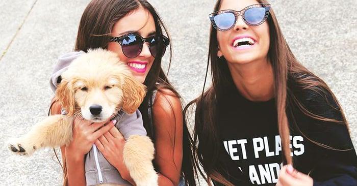 15 Cosas que NUNCA debes decirle a una persona que AMA a los perros