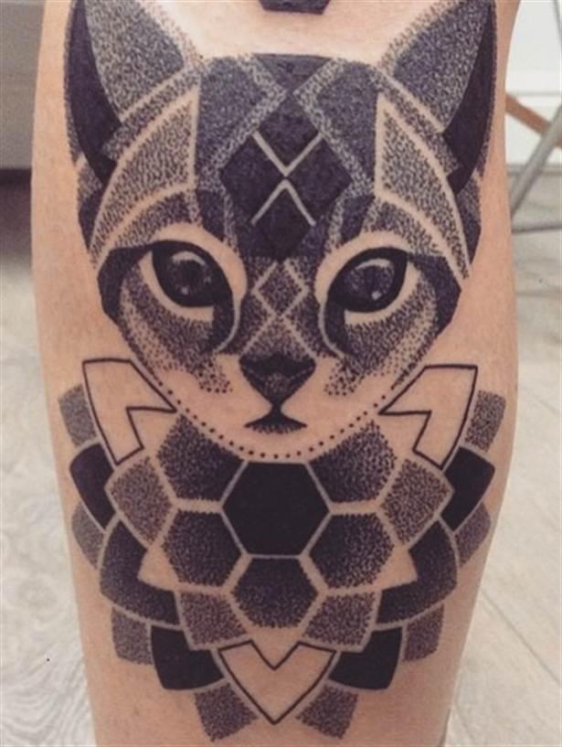 Gato geométrico