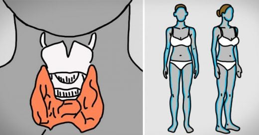 12 Millones de mujeres ignoran los síntomas del trastorno de la tiroides. ¡Conoce estas 12 señales!