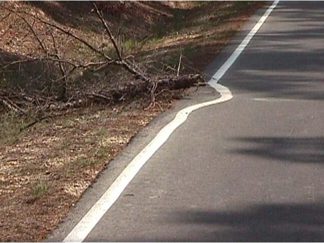 Línea de orilla de carretera mal puesta