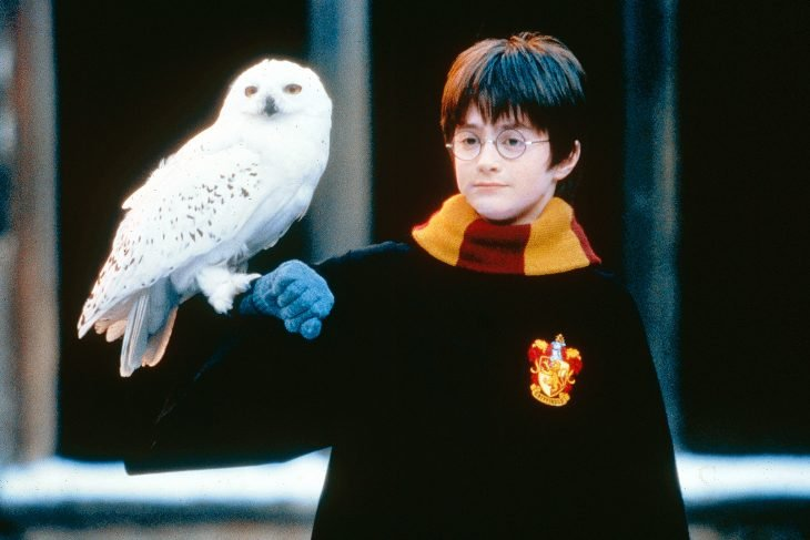 Harry potter sosteniendo a su lechuza hadwing en un brazo