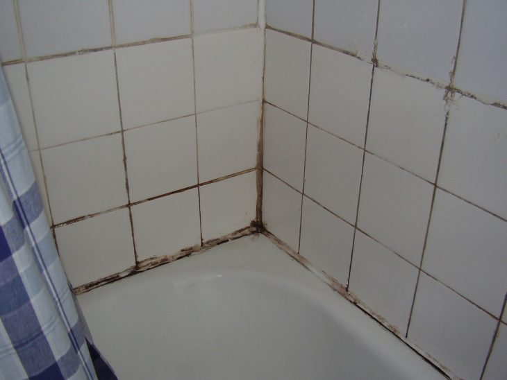 baño con moho