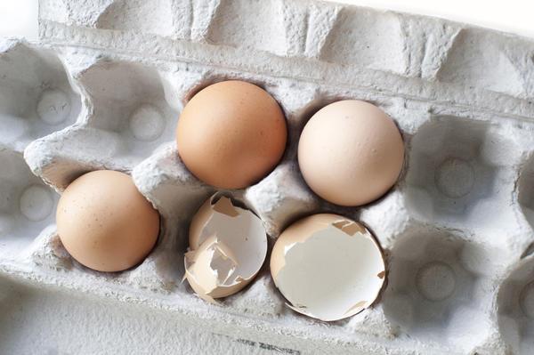 cáscaras de huevo quebradas con huevos enteros