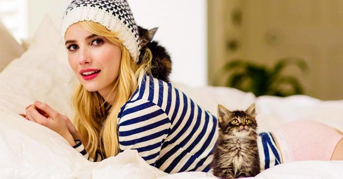 10 Señales de que eres una persona loca por los gatos