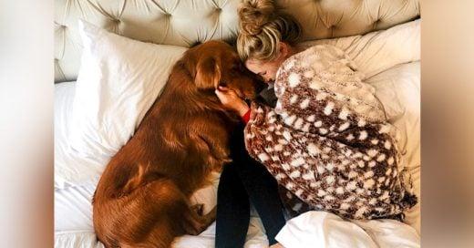 15 Cosas que sólo quien tiene un perro por mascota podrá entender