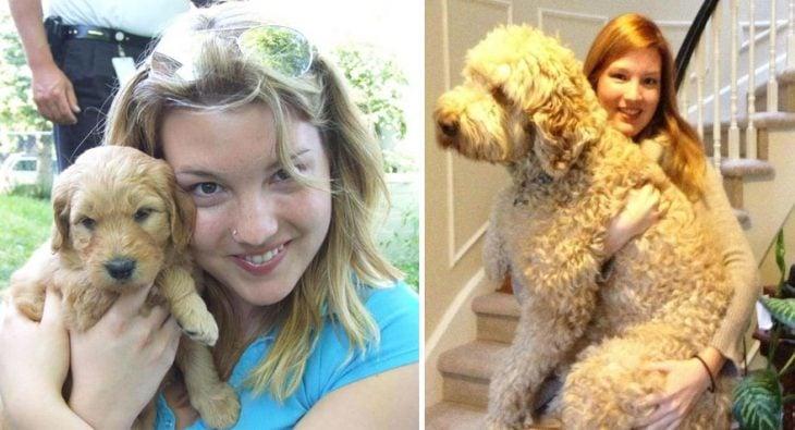 Perro antes y después de crecer siendo sostenido por su dueña
