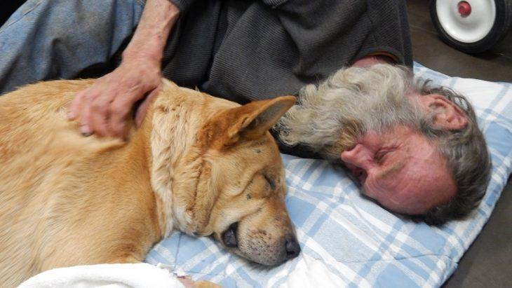 Persona sin hogar acostada junto a su perro