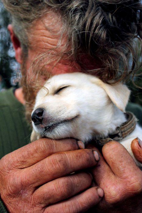 Persona sin hogar y su pequeño cachorro