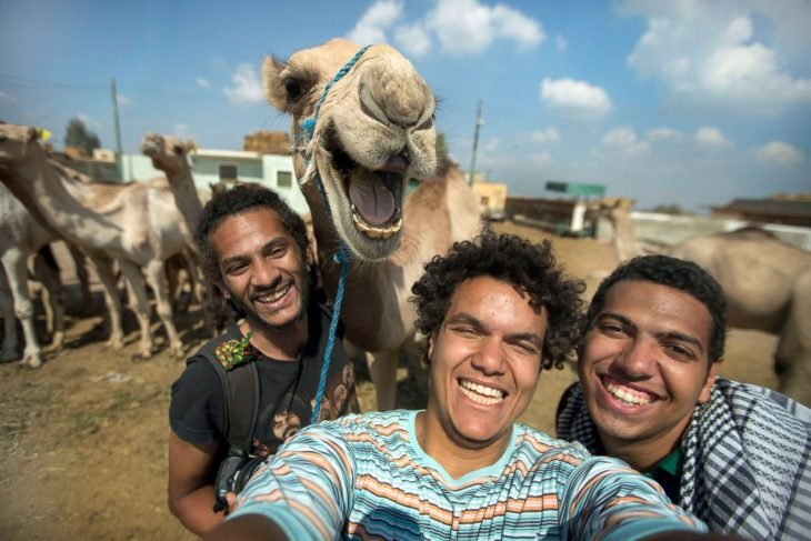 photobomb selfie tres chicos con un camello
